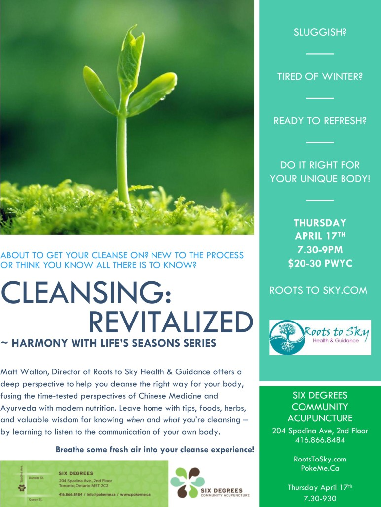 Spring Cleanse Flyer