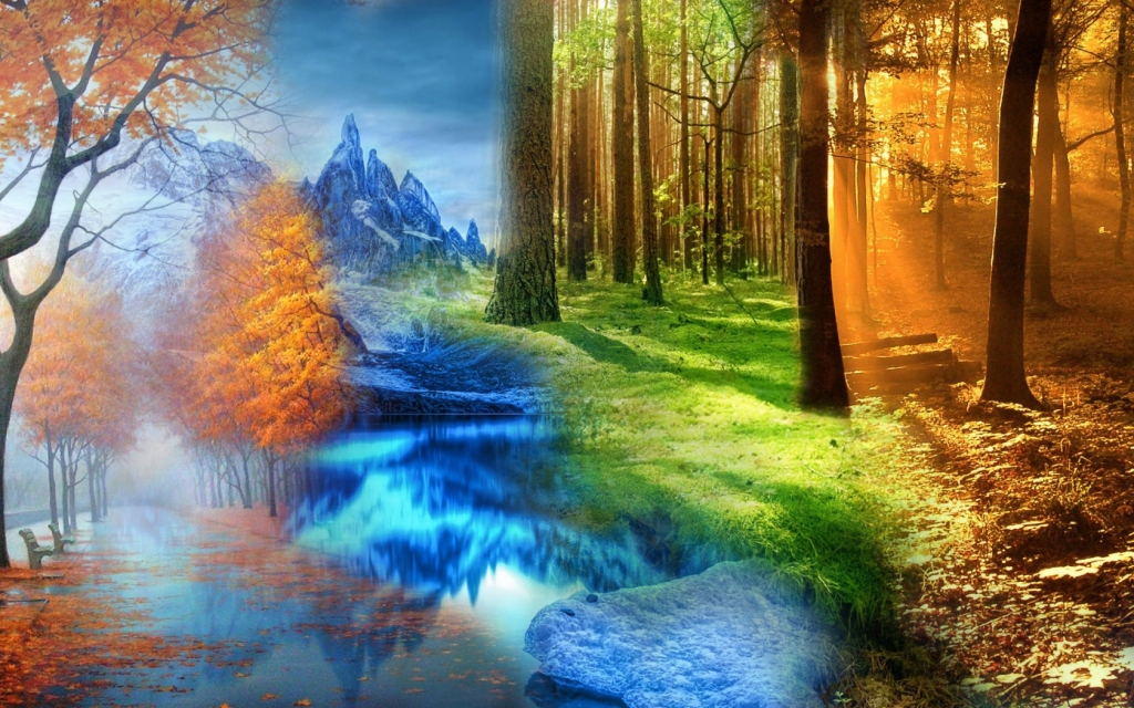 four-seasons-in-one-beautiful-wallpaper-shiftwallpapers
