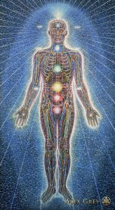 Alex_Grey-Psychic_Energy_Sy